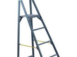 Стремянка с вертикальной опорой