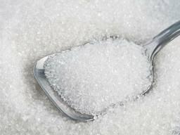 Sugar (export)