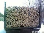 Сухие дрова сосна колотые Киев Киевская область с доставкой - фото 1