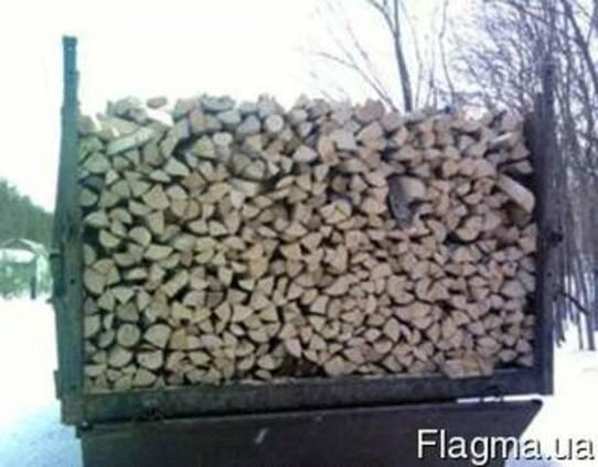 Сухие дрова сосна колотые Киев Киевская область с доставкой
