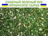 Сушеный зеленый лук - фото 4