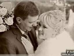 свадебный фотограф не дорого