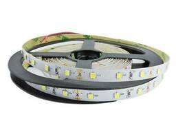 """Светодиодная LED лента гибкая 12V PROlum  IP20 2835\60 Series """"SG"""", Нейтральный-Белый. .."""