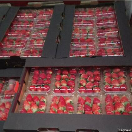Свежая клубника Fresh Strawberry