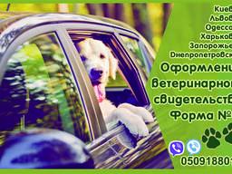 Свидетельство форма 1, ветеринарный паспорт нового образца О