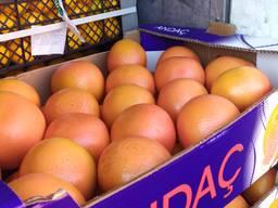 Свіжі цитрусові - мандарин, апельсин, грейфрут, лимон