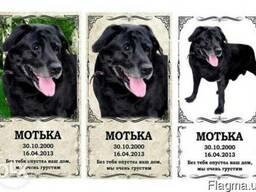Таблички памятные для животных (за 1 час) Оболонь
