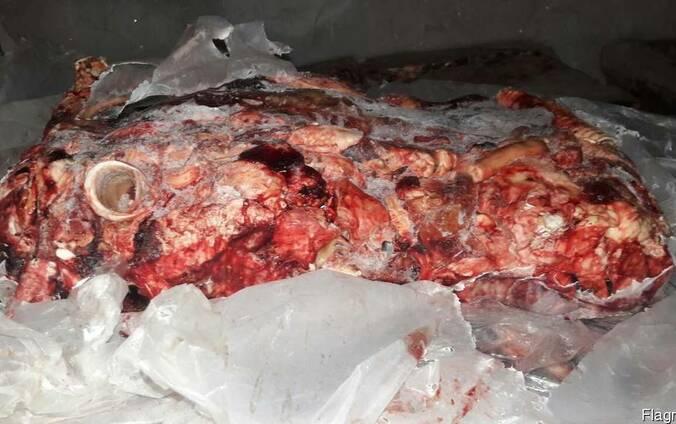 Тех. зачистка свиная, говяжья(Корм для животных)