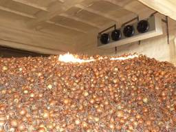 Теплоизоляция овощехранилища, фруктохранилища