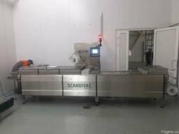 Термоформер для свежого мяса Scandivac