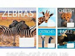 Тетрадь на 60 листов в клеточку 1 вересня Lonely Planet