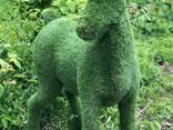 Топиарные скульптура на заказ – отличный подарок - фото 2