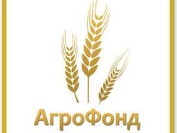 ТОВ «Агро Фонд» пропонує високо протеїнові кормові добавки д