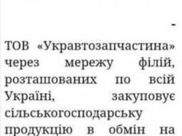 ТОВ Укравтозапчастина закуповує урожай зернових!