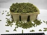 Травяная мука гранулированная из люцерны - фото 1