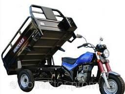 Трицикл Hercules Q1 200 вантажопідйомністю 600 кг