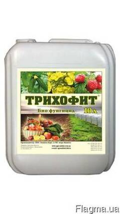 Трихофит (триходермин)