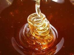 Тропический мед