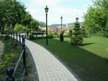Тротуарная плитка серая Ретро 3 см - фото 4
