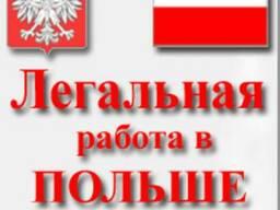 Трудоустройство в Польше официальное - фото 1