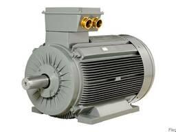 Трёхфазный электродвигатель с короткозамкнутым ротором Gamak