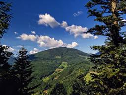 Тур в Карпаты летом, тур Закарпатье на неделю, отдых Карпаты