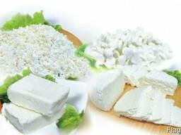 Творог оптом 18% весовой Фабрика сыра ООО