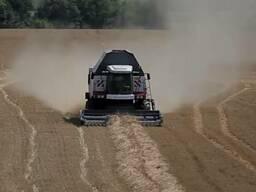Уборка кукурузы на силос покос травы сенаж подбор валков