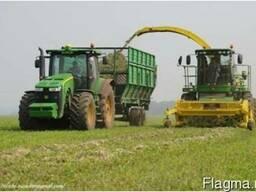 Уборка кукурузы на силос сенах покос травы