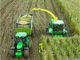 Уборка кукурузы на силос сенаж силосоуборочные комбайны