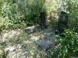 Уборка Могил (по всей Украине) - фото 4
