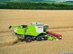 Уборка зерновых комбайнами, услуги уборки урожая комбайном