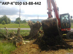 Убрать участок от деревьев и кустарника.