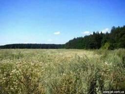 Участок 2 га под строительство в Березовке 17 км от Киева