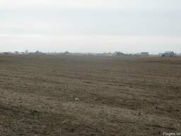Участок под строительство в с.Рогозов, Борыспольский район