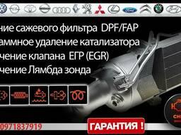 Удаление и программное отключение сажевого фильтра DPF/ FAP