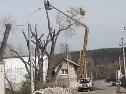 Удаление Спил деревьев Обрезка, Кронировка Вырубка Расчистка
