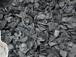 Уголь из скорлупы грецкого ореха