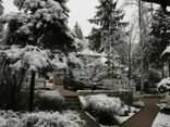 Уход за садом, консервация сада на зиму, утепление растений - фото 2