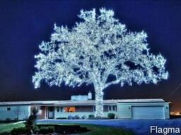 Украшение деревьев гирляндами - фото 5