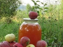 Уксус яблочный домашний с горного сада Карпат.