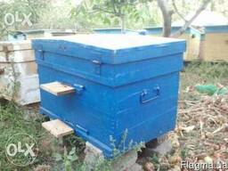 Улей лежак 24рам улик, вулик для пчел пасека