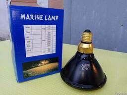 Ультрафиолетовая лампа UV-B 100W