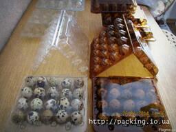 Упаковки под яйца перепелиные и контейнер для яиц, блистерна