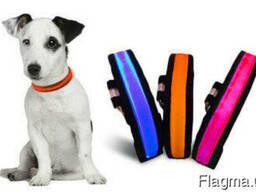 USB ошейник с подсветкой Luminous Collar For Dog
