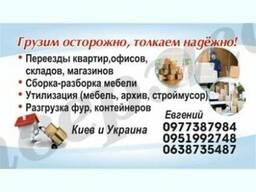 Услуги грузчиков-профессионалов. Перевозки г. Киев и Украина