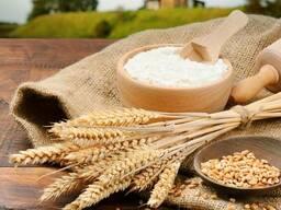 Услуги по переработке пшеницы в муку