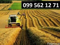 Услуги по уборке сои кукурузы зерновых р