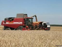 Услуги по уборке зерновых бобовых и масличных культур