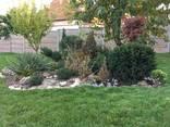 Услуги садовника - фото 3